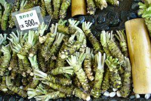 wasabi auténtico
